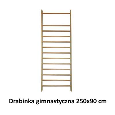 Drabinka gimnastyczna 250x90 cm