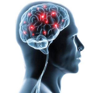 Neurologia & Neurorehabilitacja