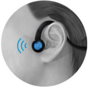forbrain przedownictwo sluchowe